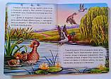 Книга-картонка А5 Серая шейка 68371 Пегас Украина, фото 2