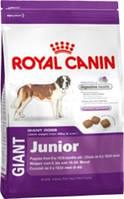 Корм для собак ROYAL CANIN (РОЯЛ КАНИН) GIANT JUNIOR 15 КГ (ДЛЯ ЩЕНКОВ ОТ 8 ДО 18-24МЕС.)