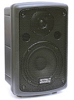 Акустическая система SOUNDKING SKFP208A