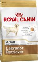 Корм для собак ROYAL CANIN (РОЯЛ КАНИН) LABRADOR ADULT 3 КГ (ЛАБРАДОР ОТ 15МЕС.)