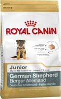 Корм для собак ROYAL CANIN (РОЯЛ КАНИН) GERMAN SHEPHERD JUNIOR 12КГ (НЕМЕЦКАЯ ОВЧАРКА ДО 15МЕС)
