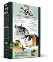 Padovan (Падован) Grandmix Cavie & Cincilla Комплексный корм для морских свинок шиншилл и дегу 20 кг