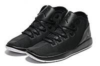 Баскетбольные кроссовки Nike Air Jordan Reveal Premium черный, фото 1