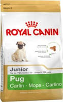 КОРМ ДЛЯ СОБАК ROYAL CANIN (РОЯЛ КАНИН) PUG ADULT 3 КГ (МОПС ДО 10МЕС)