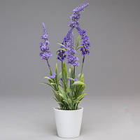 Цветы лаванды в керамическом вазоне 31 см