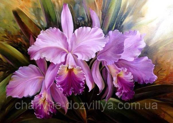 """Набор алмазной вышивки (мозаики) """"Розовые орхидеи"""". Художник Douglas Frasquetti, фото 2"""