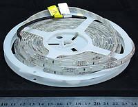 Світлодіодна стрічка синя 3528-60-IP64-B-8-12 R8860BA
