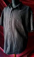 Рубашка Taylor Wright черного цвета короткий рукав