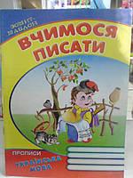 Подготовка к школе ВЧИМОСЯ ПИСАТИ