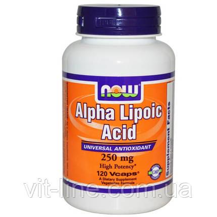 Альфа-липоевая кислота от Now Foods 250 мг, 120 капсул, фото 2