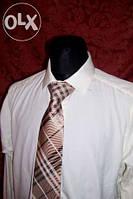 Мужская рубашка Alexcandеr, длинный рукав