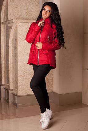 Женская красная демисезонная куртка р. 44-56 арт. 959 Тон 75, фото 2