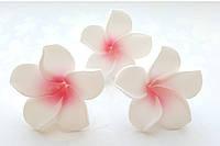 Цветок Плюмерия Розово-Белая из фоамирана (латекса) 4 см 1 шт