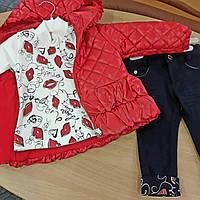Комплект для девочки демисезонный (курточка+джинсики+батник)