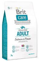 Brit  Care GF Adult Salmon & Potato 1 kg  для собак весом до 25 кг