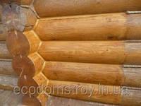 Ремонт деревянных домов, восстановление домов под ключ, фото 1