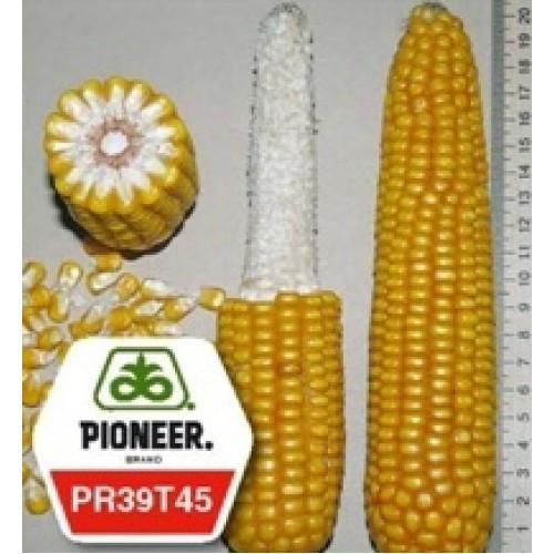 Семена кукурузы Пионер ПР39Т45 ФАО 250 (Pioneer PR39T45)