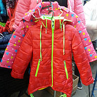 Модная детская куртка на флисе (девочка)