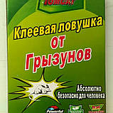 Клеевая ловушка от крыс и мышей 24см*17см( книжка), фото 3