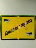 Клеевая ловушка от крыс и мышей 24см*17см( книжка), фото 4