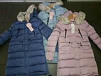 Куртка зимняя на девочку удлинённая GRACE