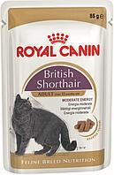 Royal Canin British Shorthair Adult (в соусе) Влажный корм для британских короткошерстных кошек старше 12 мес.