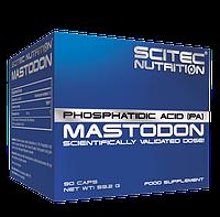 Аминокислоты Scitec Nutrition Mastodon (90 caps)