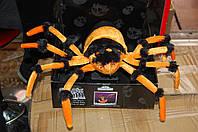 Большой паук светящийся, фото 1
