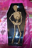 Скелет в гробу