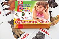 """Набор детских карточек """"Домашние животные"""", 15 шт в наборе (укр)"""