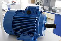 Электродвигатель АИРМ63А2 (однофазный общепромышленного назначения, 0,37 кВт, 3000 об.мин)