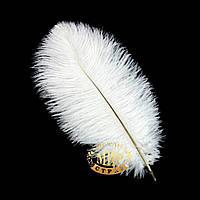 Белое перо страуса, Размер 20-25см, 1шт