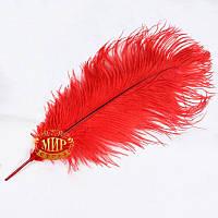 Красное перо страуса, размер 30см