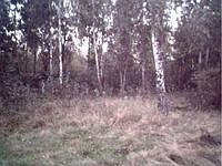 Продажа земельных участков в Киевской области ОСГ Макаров
