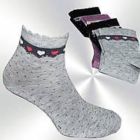 Носки женские Calze Moda, котоновые, цвета в ассортименте