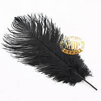 Черное перо страуса, размер 30см