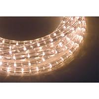 Дюралайт свеодиодный 2 линии LED 13мм белый