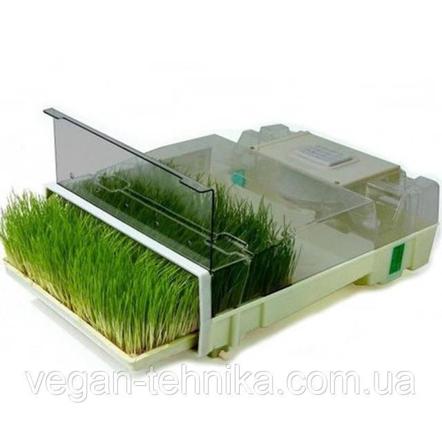 Бытовые проращиватели зелени, ростков, проростков, зерен и семян