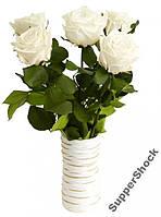 Букет из 5 роз Florich.Не вянут 5лет. 5/37