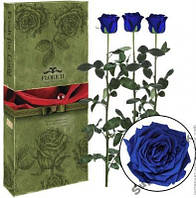 Долговечная роза в стеклянной колбе Florich.Не вянет 5 лет! 3 розы.КРУПНЫЕ.5/36см