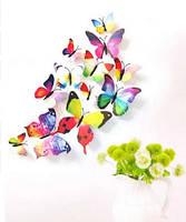 Бабочки 3d для декораций цветные.НОВИНКА.