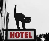 Стаціонар (готель) для тварин