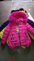 Куртка девочка зима оптом, фото 1