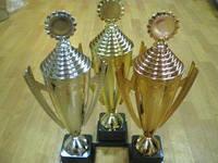Кубки наградные (золото, серебро, бронза)