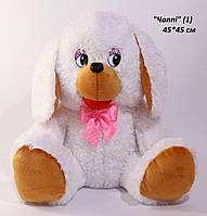 Собака Чаппі 1 2111