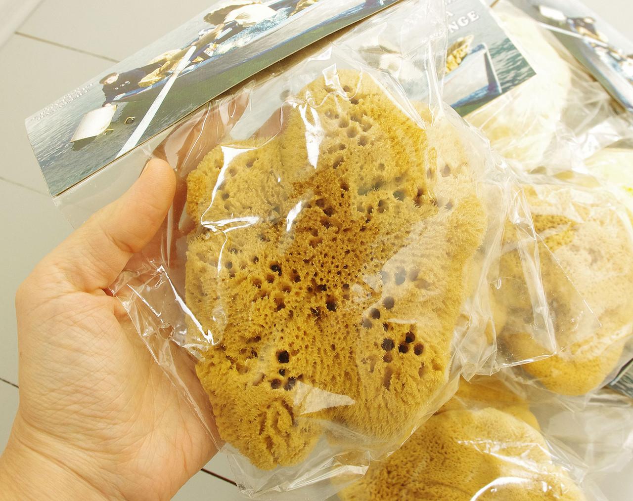 Морская губка Fina Silk для тела, натуральная, 5-5,5 дюйма, Греция
