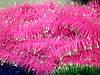 Дождик-Мишура 100мм диаметр,розовый с серебрнным кончиком .Харьков