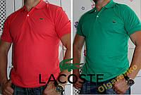 Огромный ассортимент мужских рубашек поло Lacoste