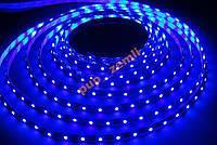 Светодиодная лента Синий SMD3528 60д/м влагозащищенная IP65 5м