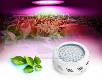 Фитопанель для быстрого роста растений 180W (10 полных спектров)